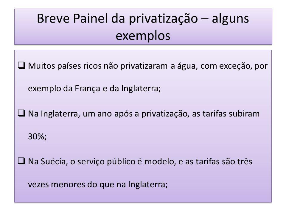 Breve Painel da privatização – alguns exemplos