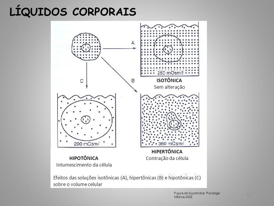 Intumescimento da célula