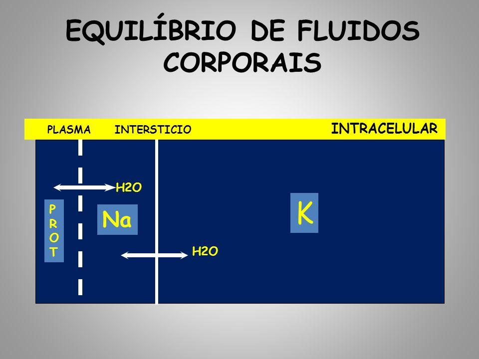 EQUILÍBRIO DE FLUIDOS CORPORAIS