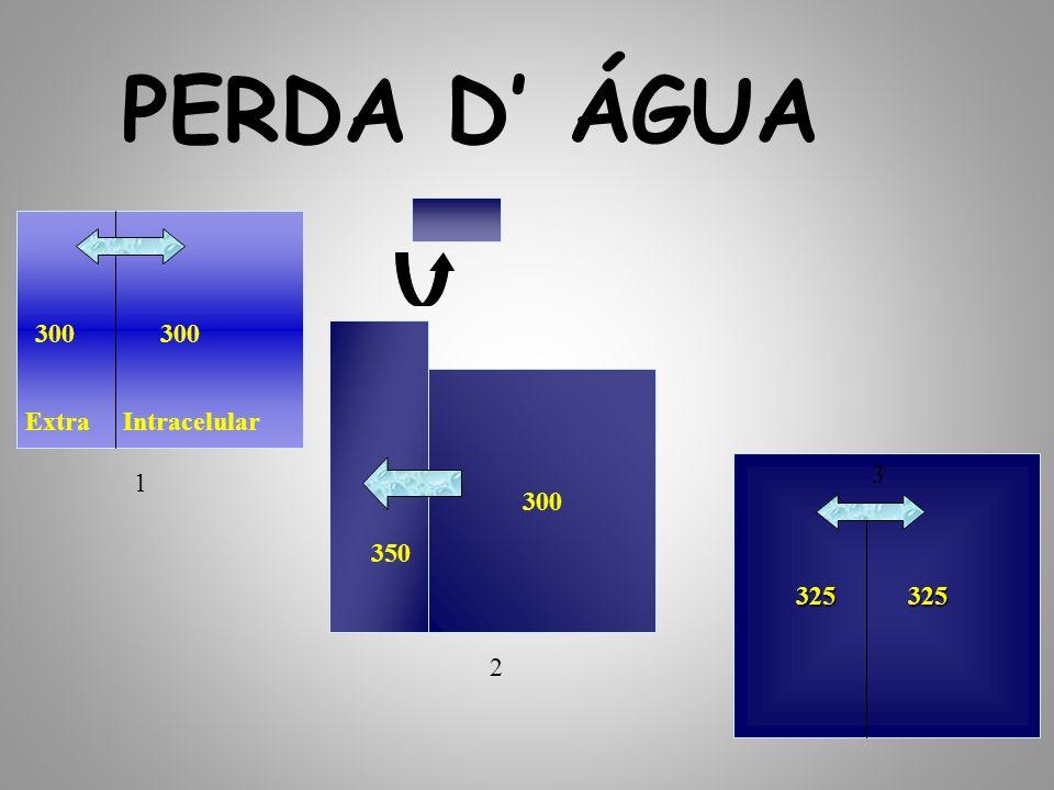 PERDA D' ÁGUA 300 300 300 Extra Intracelular 325 325 3 1 350 2
