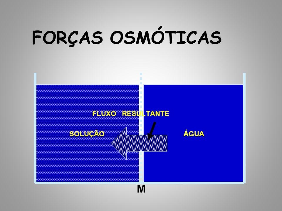 FORÇAS OSMÓTICAS SOLUÇÃO ÁGUA FLUXO RESULTANTE M