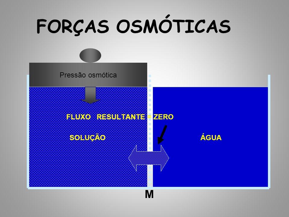 FORÇAS OSMÓTICAS M Pressão osmótica SOLUÇÃO ÁGUA