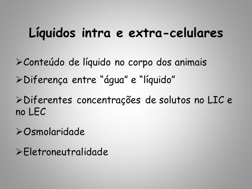 Líquidos intra e extra-celulares