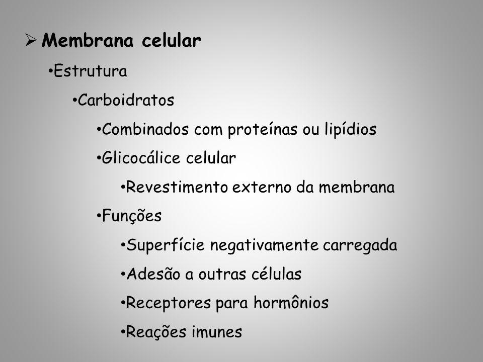 Membrana celular Estrutura Carboidratos