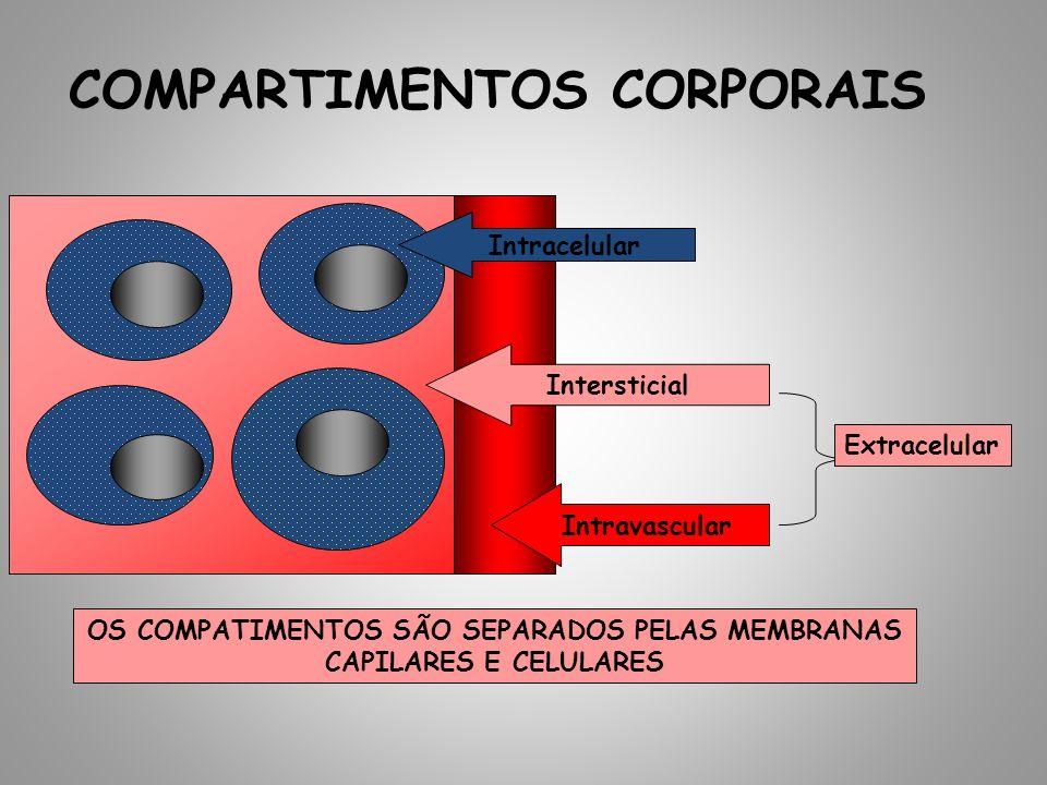 COMPARTIMENTOS CORPORAIS