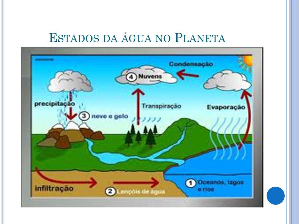Estados da água no Planeta