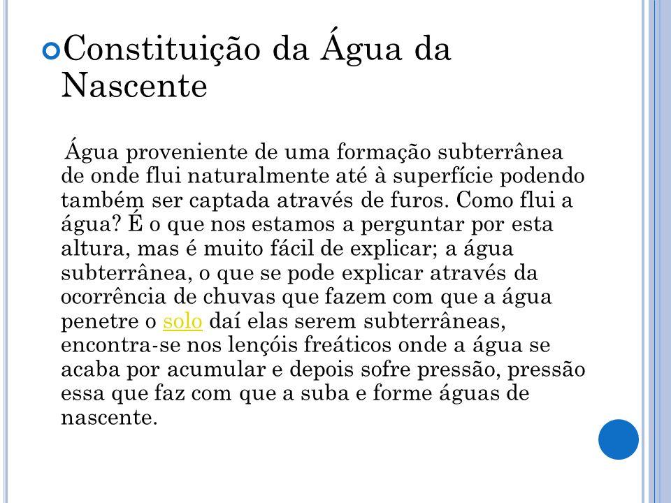 Constituição da Água da Nascente