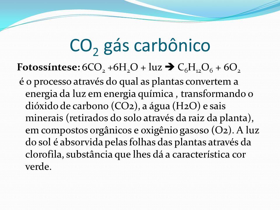 CO2 gás carbônico
