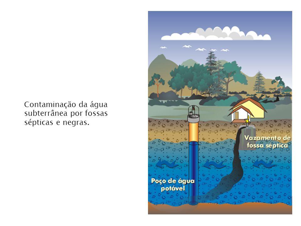 Contaminação da água subterrânea por fossas