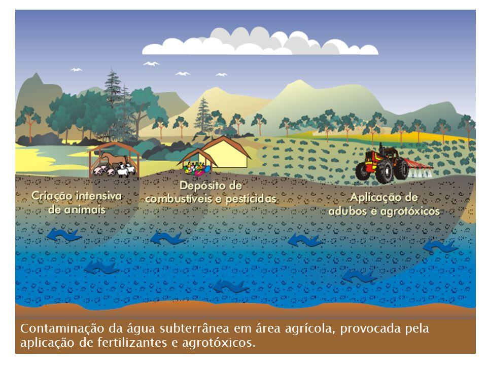 Contaminação da água subterrânea em área agrícola, provocada pela aplicação de fertilizantes e agrotóxicos.