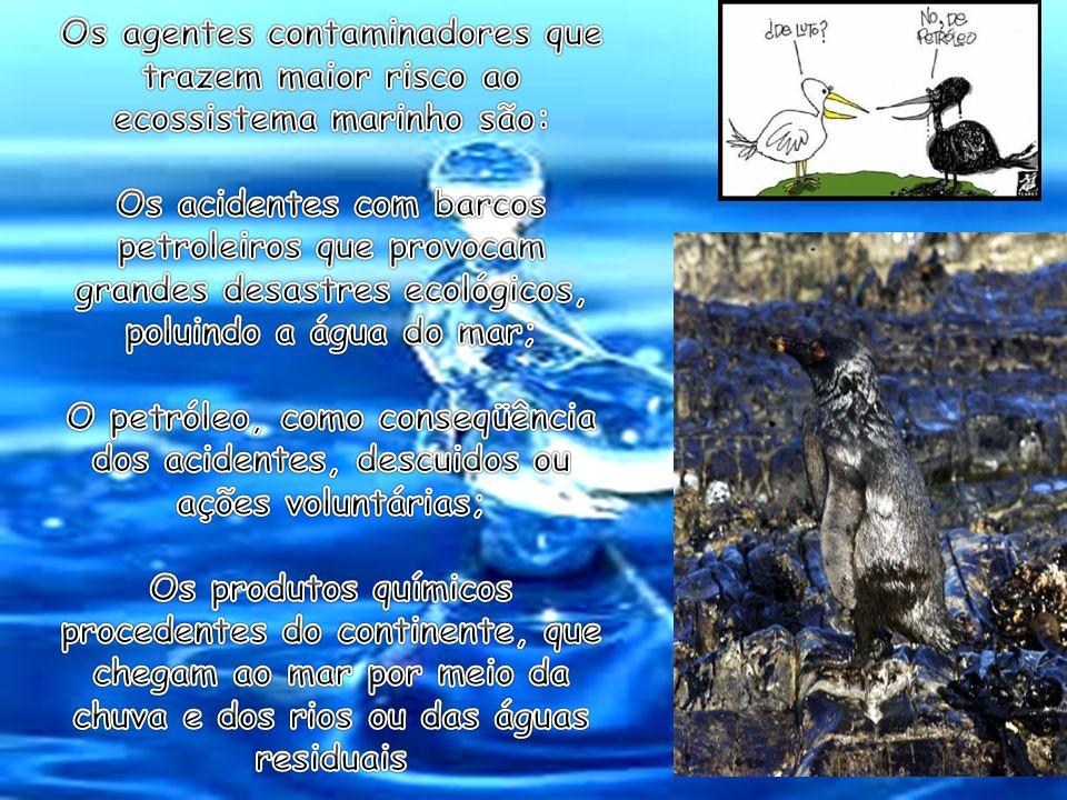 Os agentes contaminadores que trazem maior risco ao ecossistema marinho são: Os acidentes com barcos petroleiros que provocam grandes desastres ecológicos, poluindo a água do mar; O petróleo, como conseqüência dos acidentes, descuidos ou ações voluntárias; Os produtos químicos procedentes do continente, que chegam ao mar por meio da chuva e dos rios ou das águas residuais
