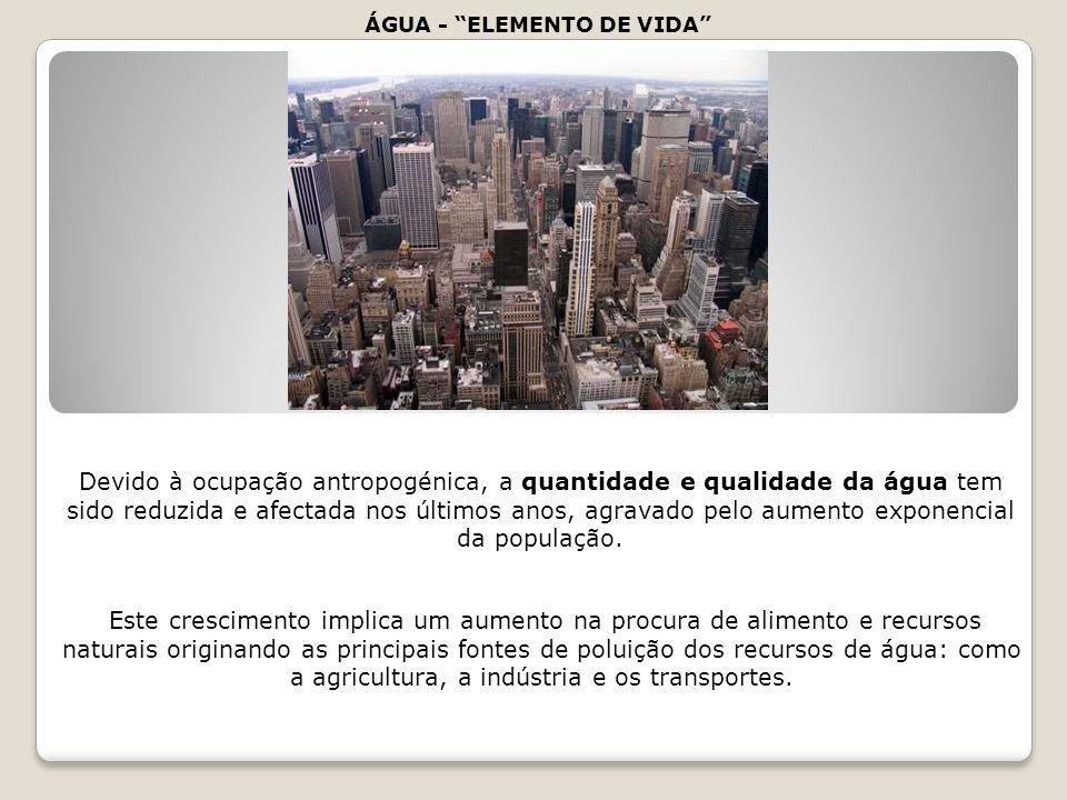 ÁGUA - ELEMENTO DE VIDA