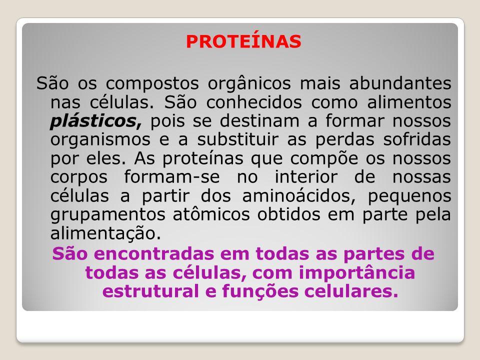 PROTEÍNAS São os compostos orgânicos mais abundantes nas células