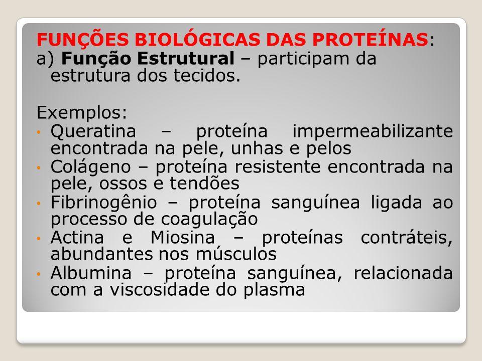 FUNÇÕES BIOLÓGICAS DAS PROTEÍNAS:
