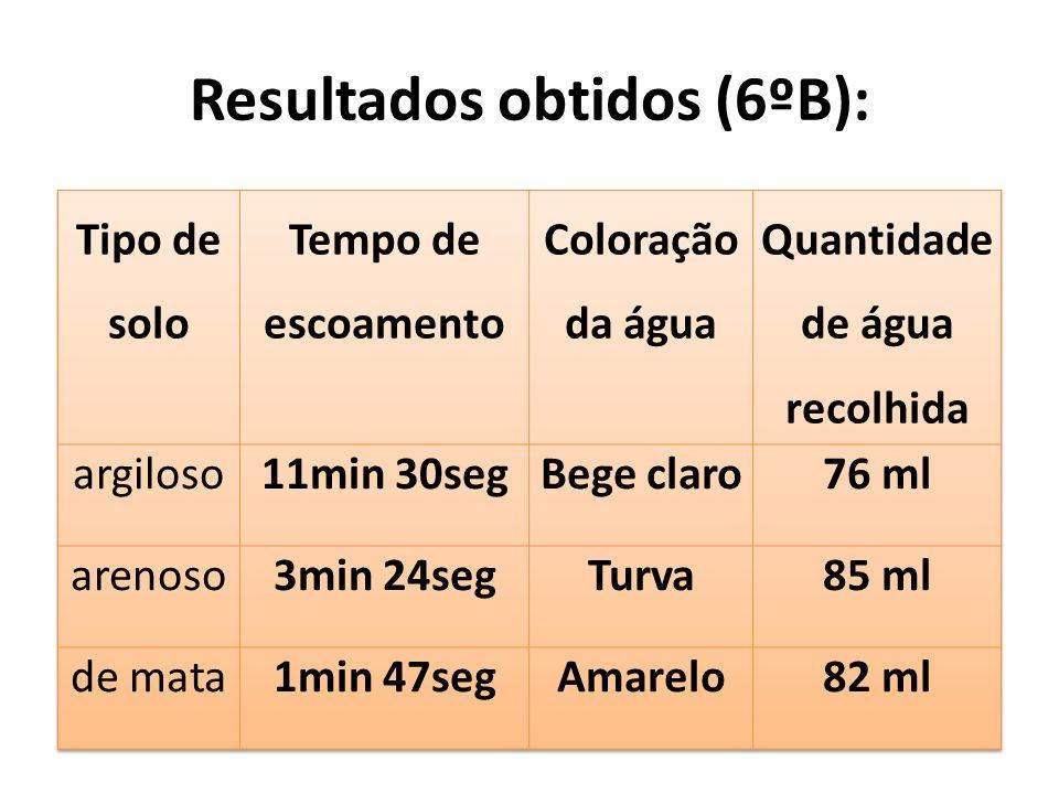 Resultados obtidos (6ºB):