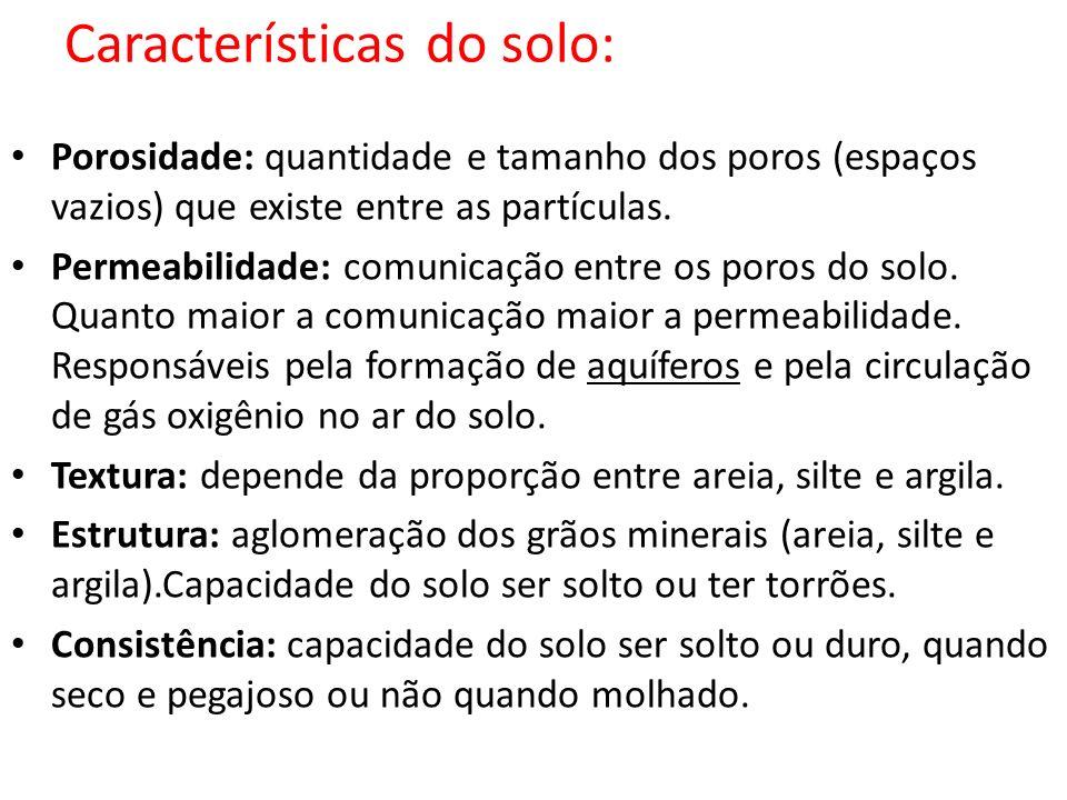 Características do solo: