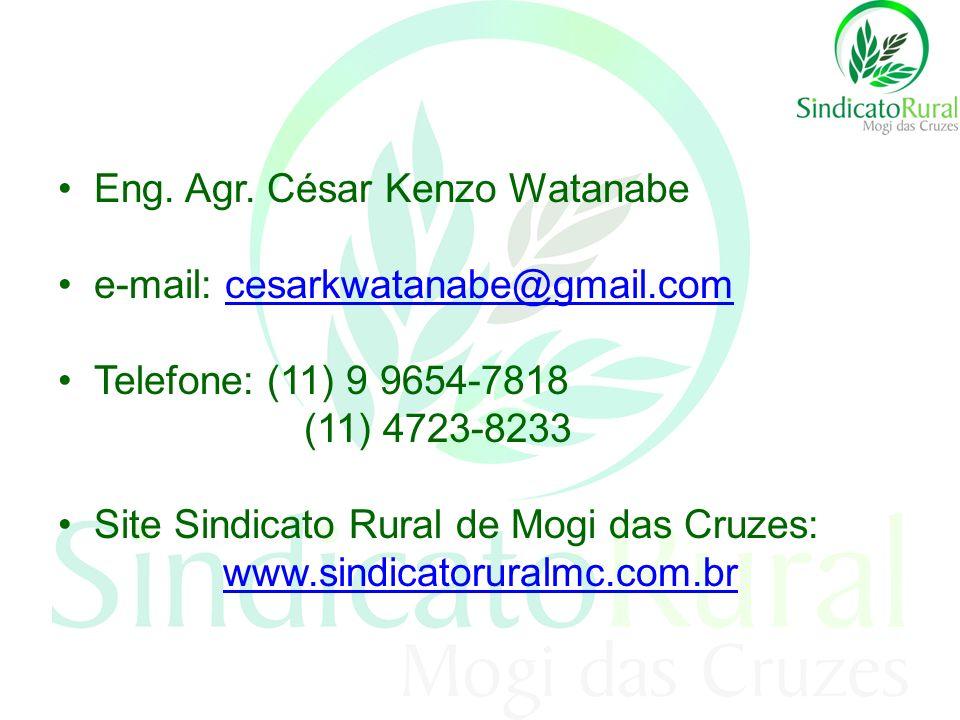 Eng. Agr. César Kenzo Watanabe