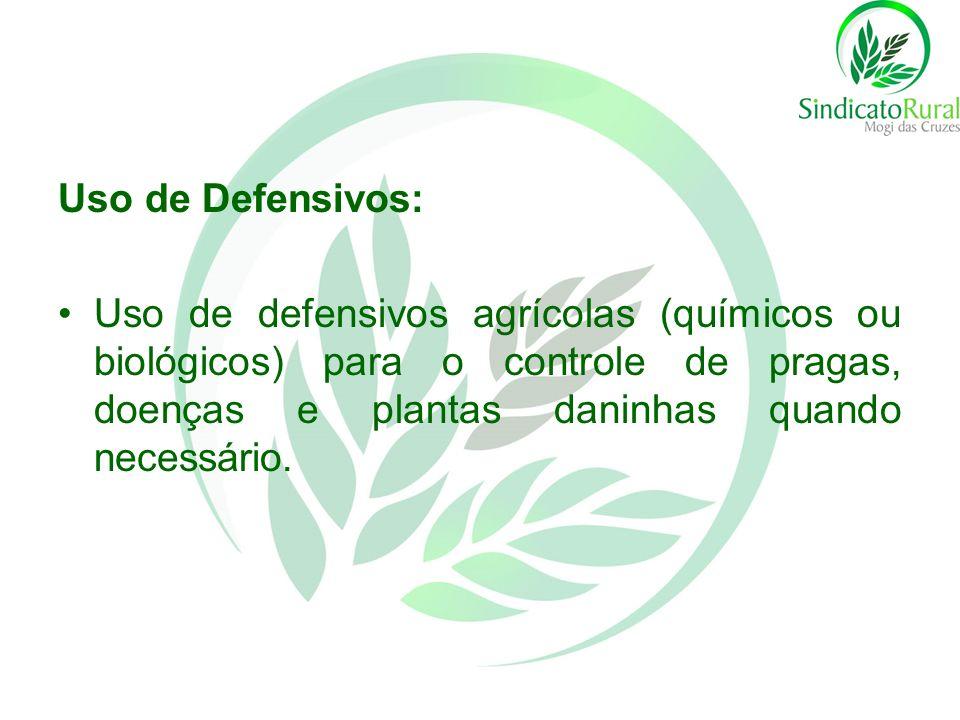 Uso de Defensivos: Uso de defensivos agrícolas (químicos ou biológicos) para o controle de pragas, doenças e plantas daninhas quando necessário.