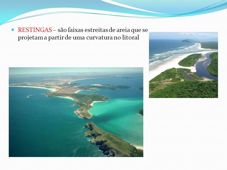 RESTINGAS – são faixas estreitas de areia que se projetam a partir de uma curvatura no litoral