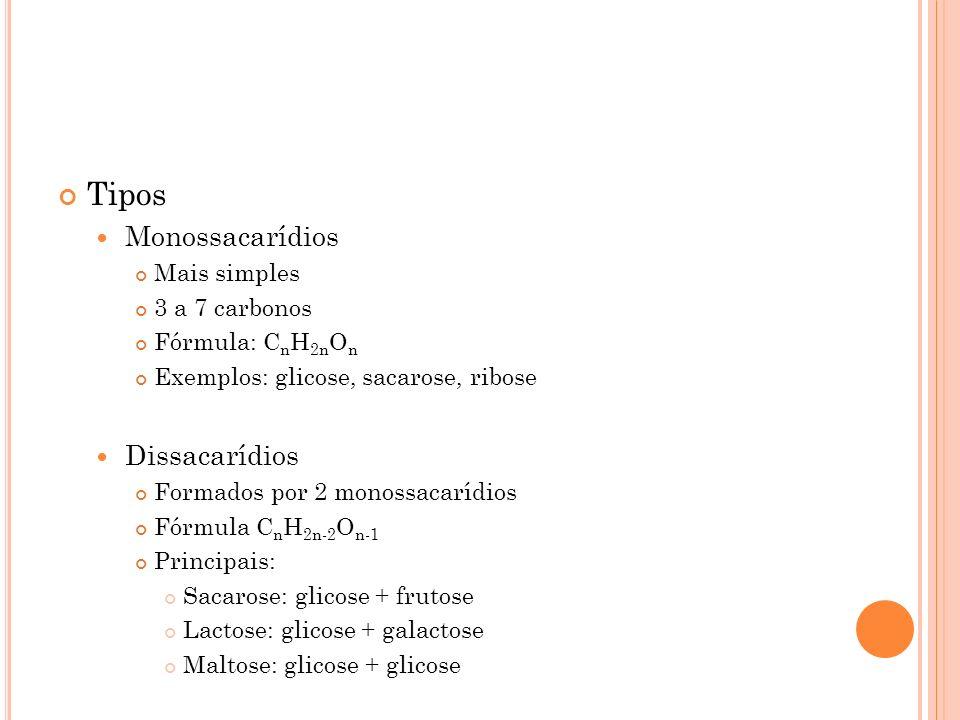 Tipos Monossacarídios Dissacarídios Mais simples 3 a 7 carbonos