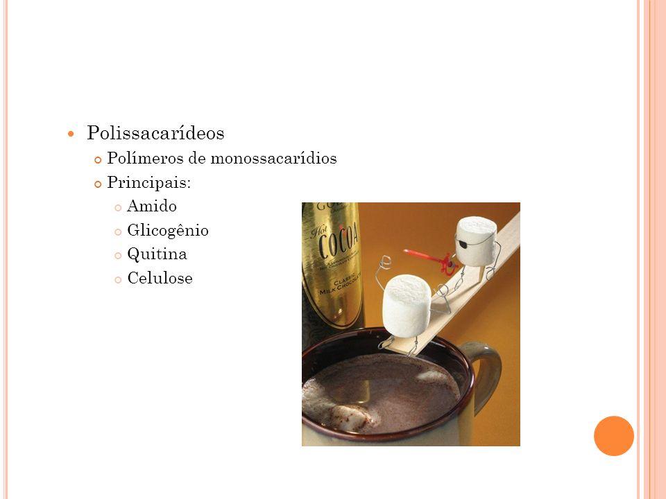 Polissacarídeos Polímeros de monossacarídios Principais: Amido