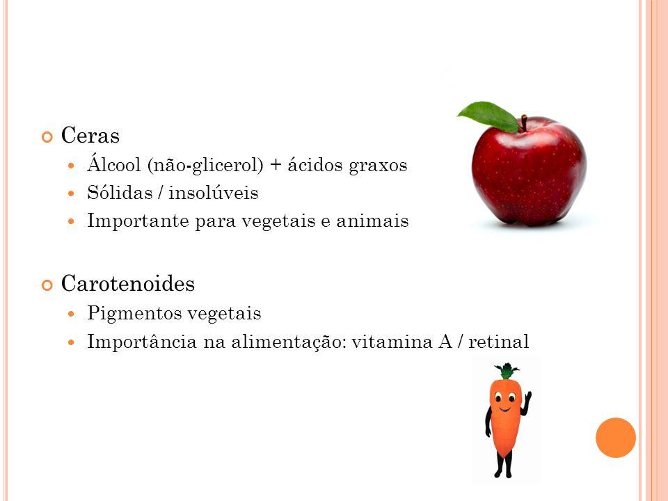 Ceras Carotenoides Álcool (não-glicerol) + ácidos graxos