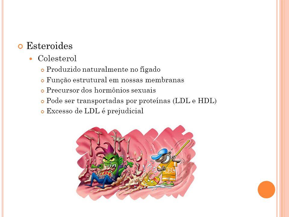 Esteroides Colesterol Produzido naturalmente no fígado