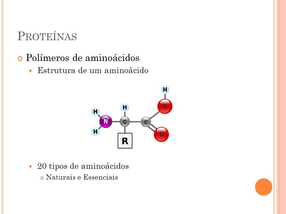 Proteínas Polímeros de aminoácidos Estrutura de um aminoácido