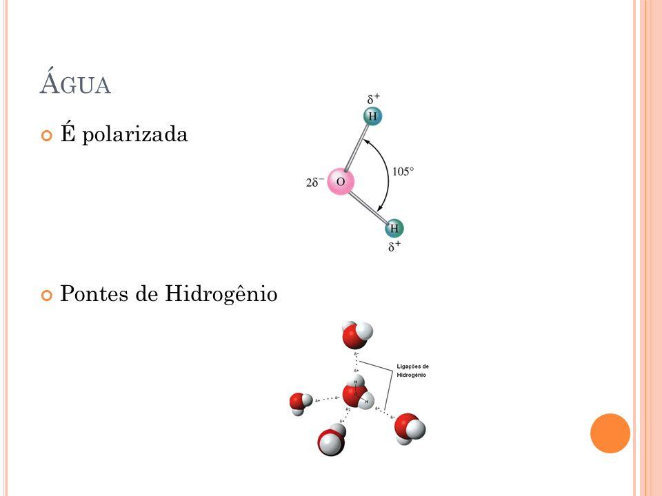 Água É polarizada Pontes de Hidrogênio