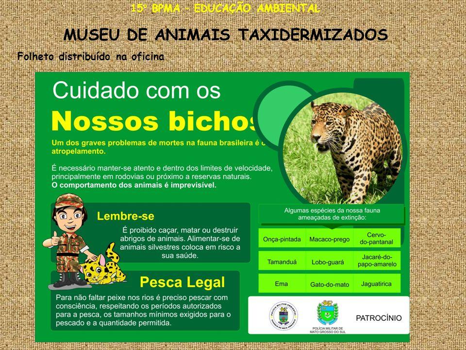 15° BPMA – EDUCAÇÃO AMBIENTAL MUSEU DE ANIMAIS TAXIDERMIZADOS