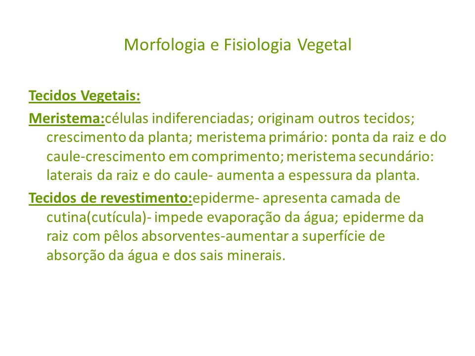 Morfologia e Fisiologia Vegetal