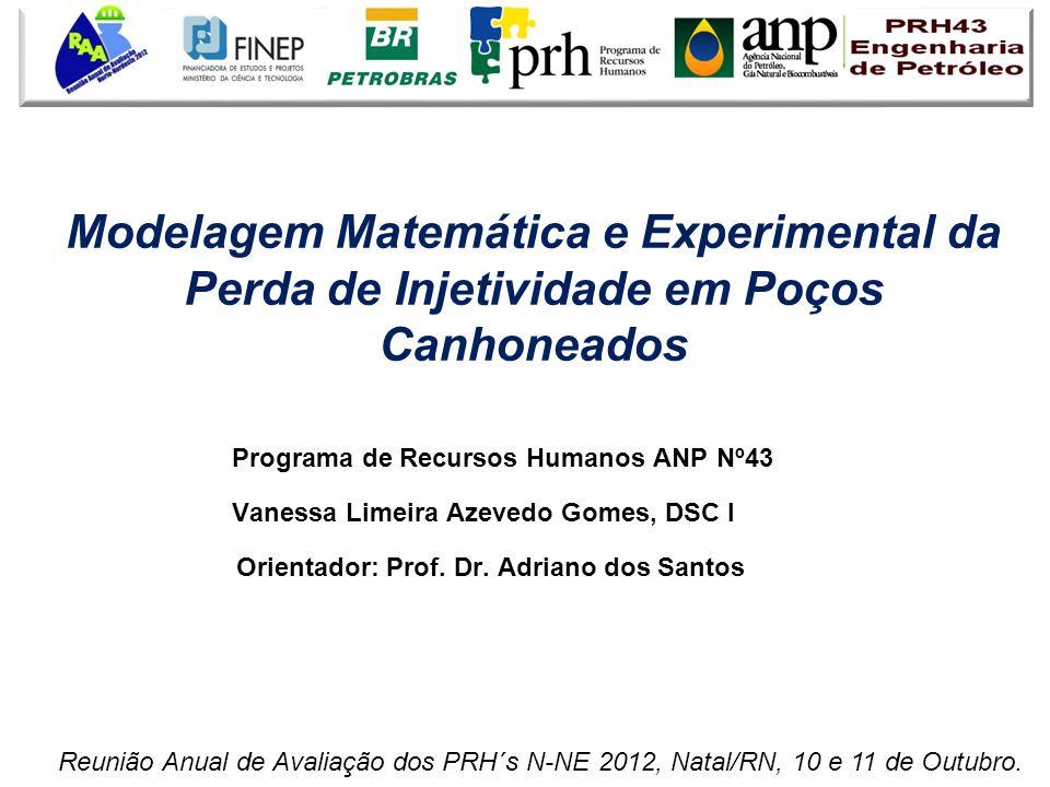 Modelagem Matemática e Experimental da Perda de Injetividade em Poços Canhoneados