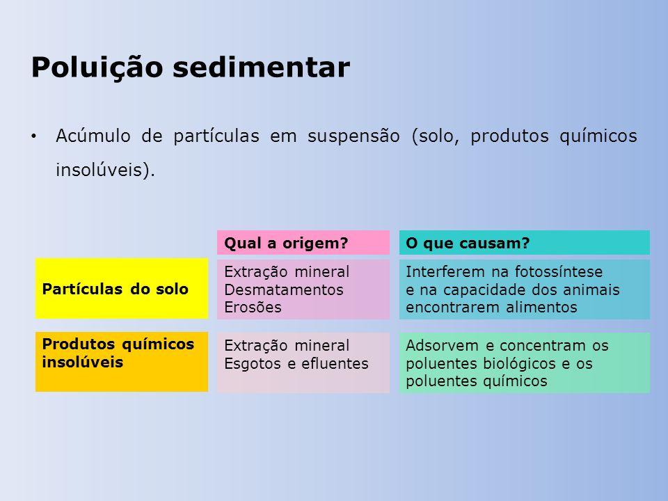 Poluição sedimentar Acúmulo de partículas em suspensão (solo, produtos químicos insolúveis). Qual a origem