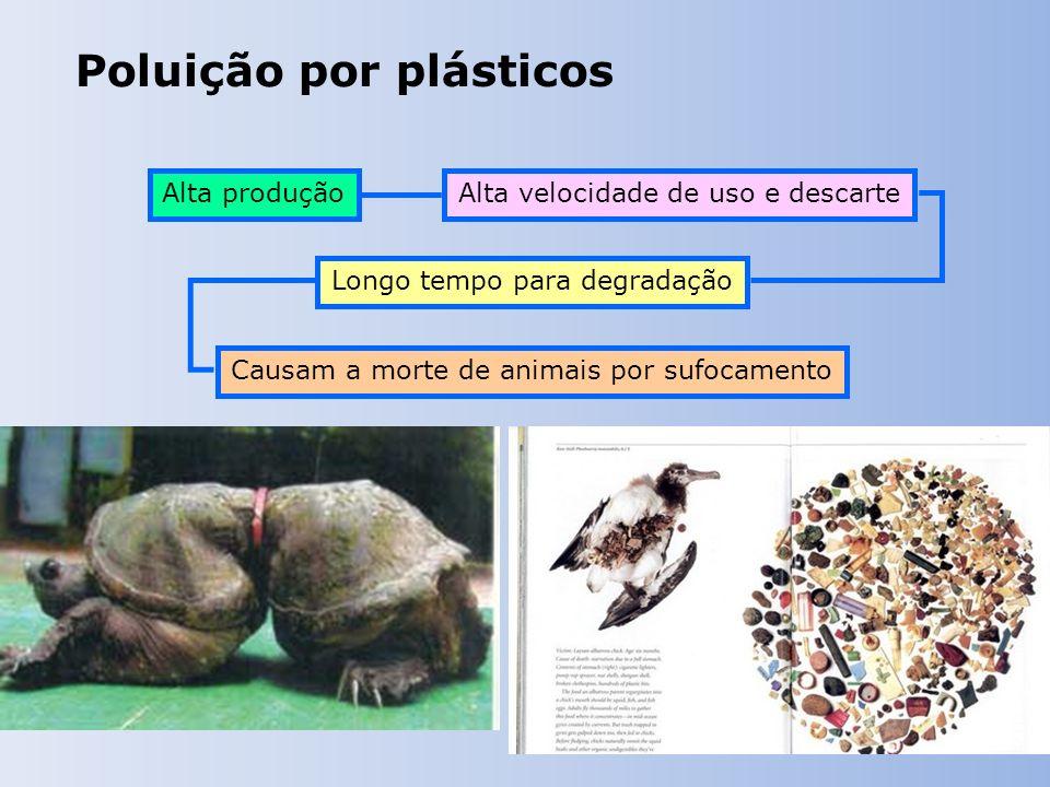 Poluição por plásticos