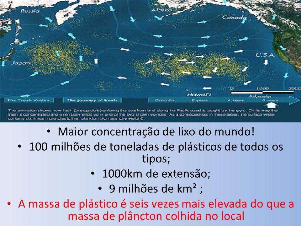 Maior concentração de lixo do mundo!