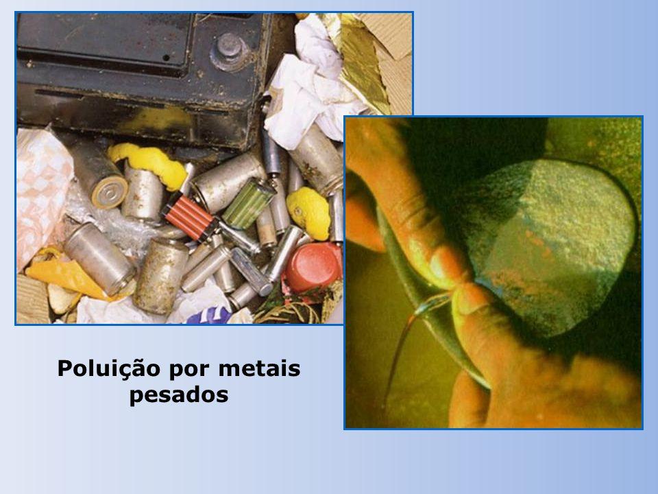 Poluição por metais pesados