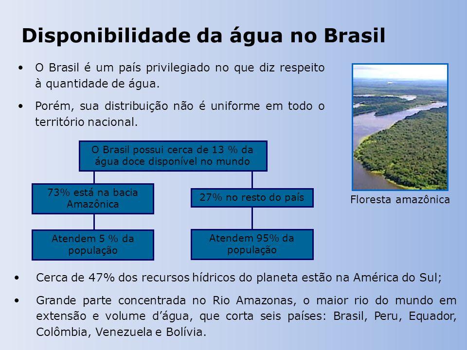 Disponibilidade da água no Brasil