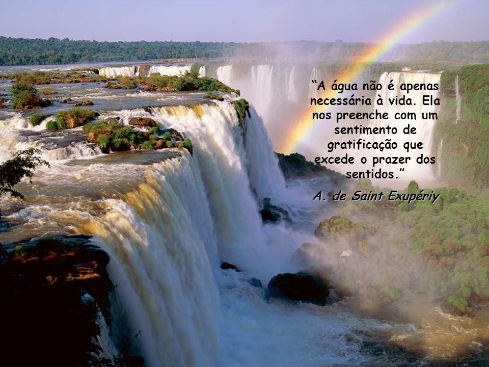 A água não é apenas necessária à vida