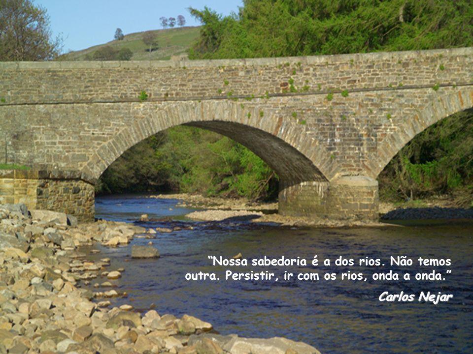 Nossa sabedoria é a dos rios. Não temos outra