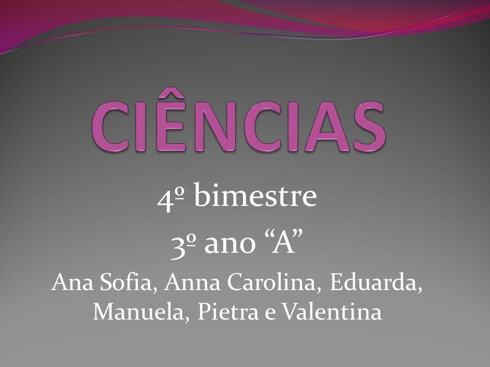 Ana Sofia, Anna Carolina, Eduarda, Manuela, Pietra e Valentina