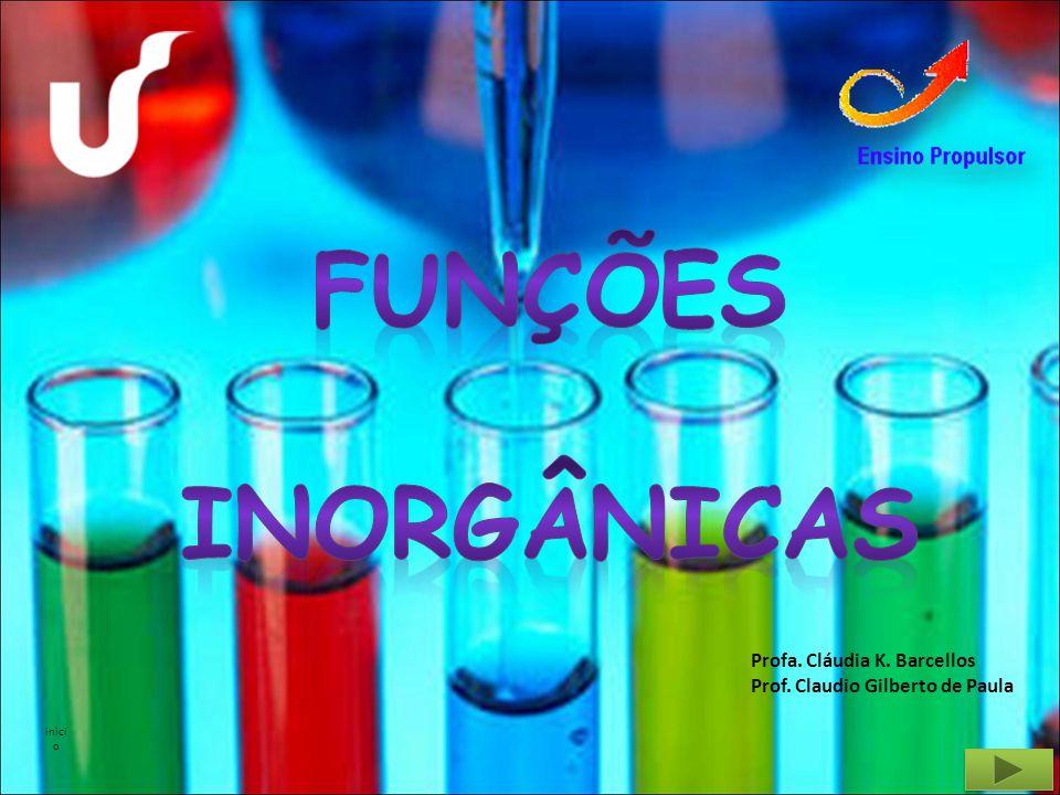 FUNÇÕES INORGÂNICAS Profa. Cláudia K. Barcellos