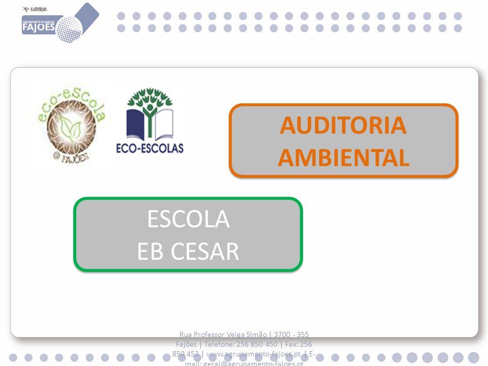 AUDITORIA AMBIENTAL ESCOLA EB CESAR