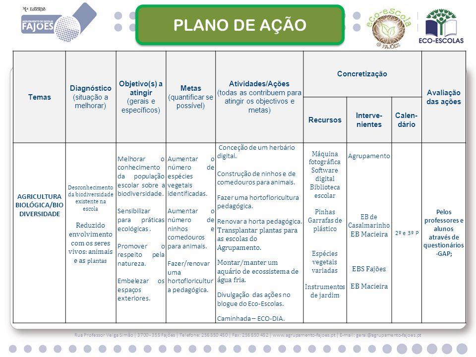 PLANO DE AÇÃO Temas Diagnóstico (situação a melhorar)