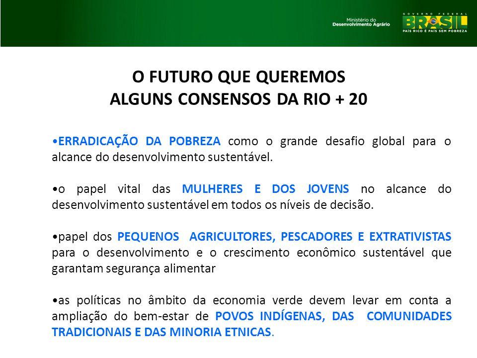 ALGUNS CONSENSOS DA RIO + 20