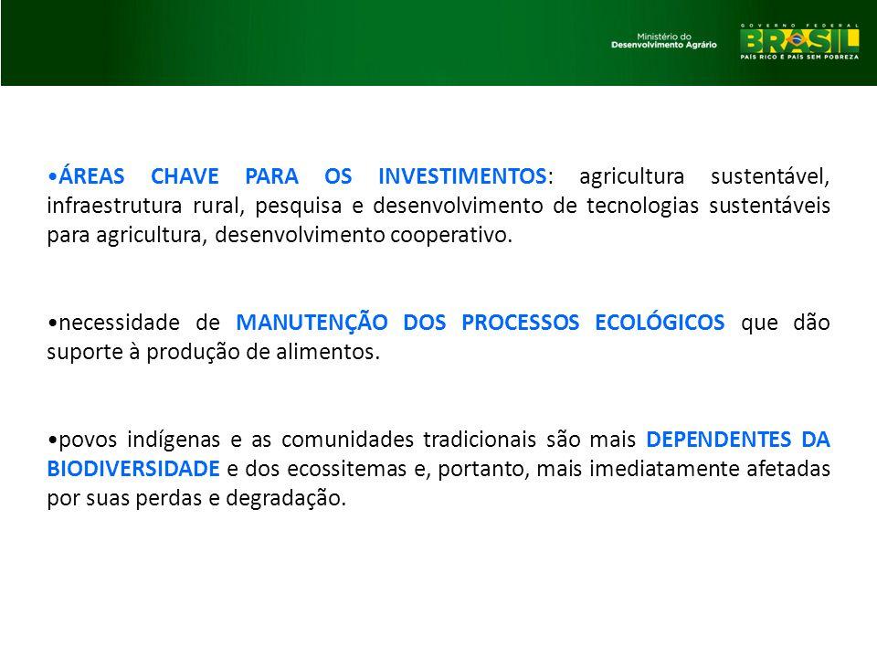 ÁREAS CHAVE PARA OS INVESTIMENTOS: agricultura sustentável, infraestrutura rural, pesquisa e desenvolvimento de tecnologias sustentáveis para agricultura, desenvolvimento cooperativo.