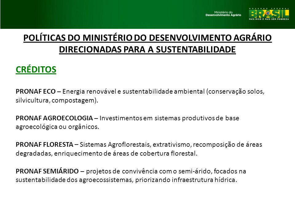 POLÍTICAS DO MINISTÉRIO DO DESENVOLVIMENTO AGRÁRIO DIRECIONADAS PARA A SUSTENTABILIDADE