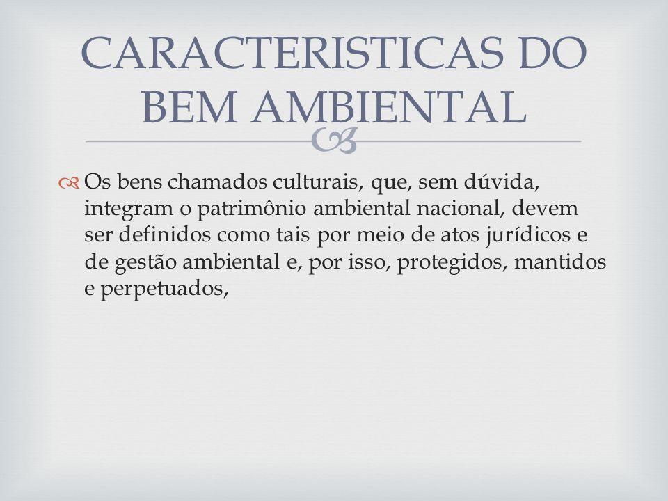 CARACTERISTICAS DO BEM AMBIENTAL