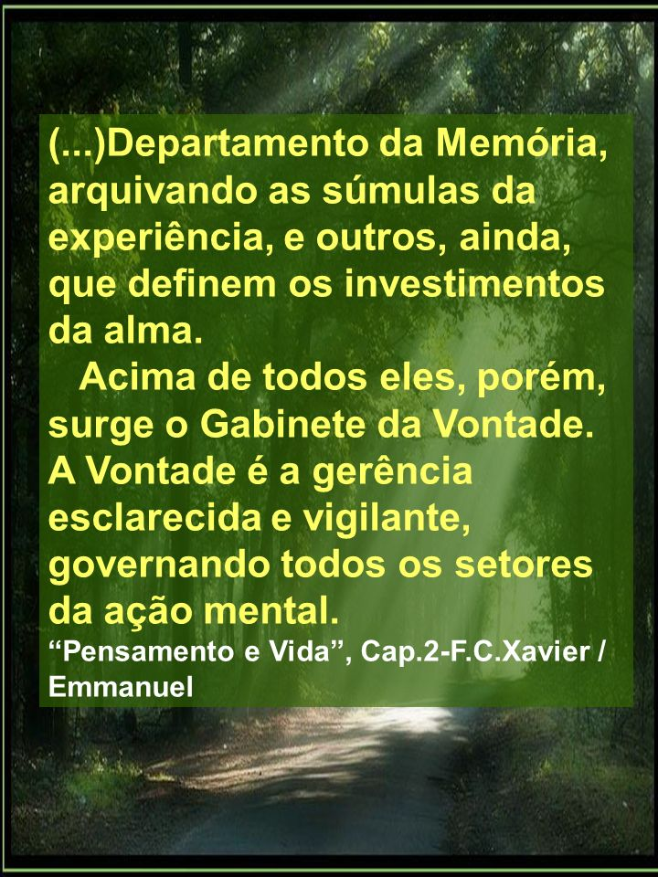 (...)Departamento da Memória, arquivando as súmulas da experiência, e outros, ainda, que definem os investimentos da alma.