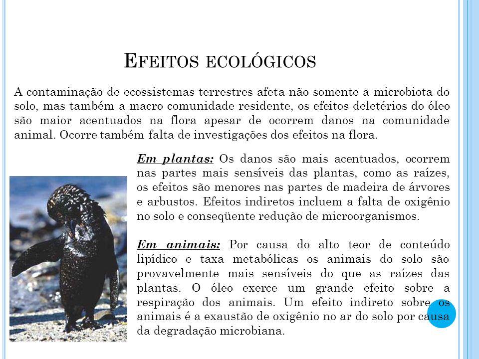 Efeitos ecológicos