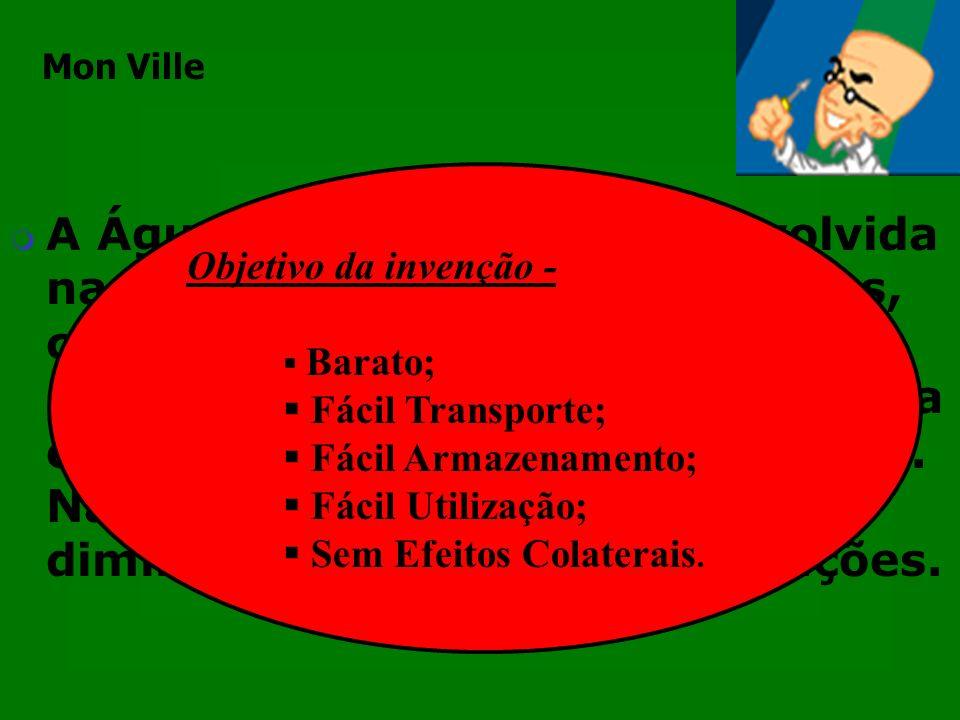 Mon Ville Objetivo da invenção - Barato; Fácil Transporte; Fácil Armazenamento; Fácil Utilização;